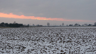 leil.de/di/pics/news_1.november2012.jpg