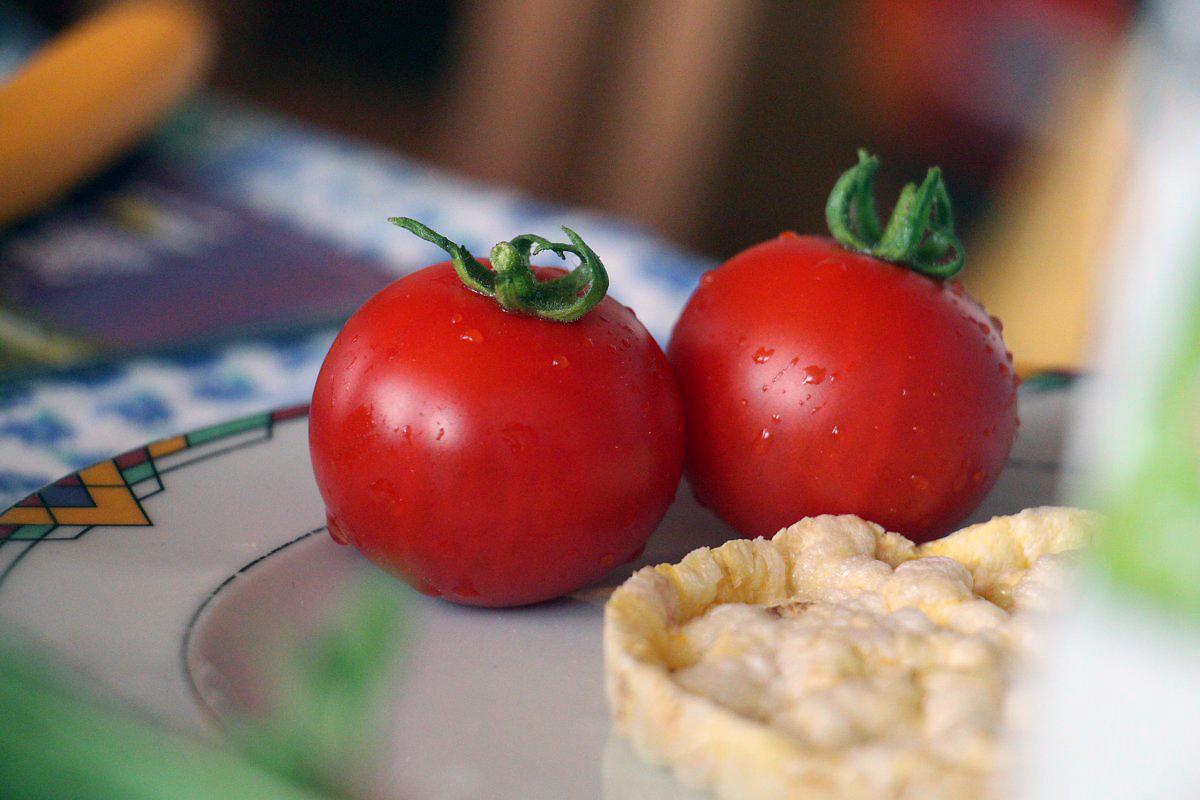 leil.de/di/pics/tomaten_maiswaffel.jpg