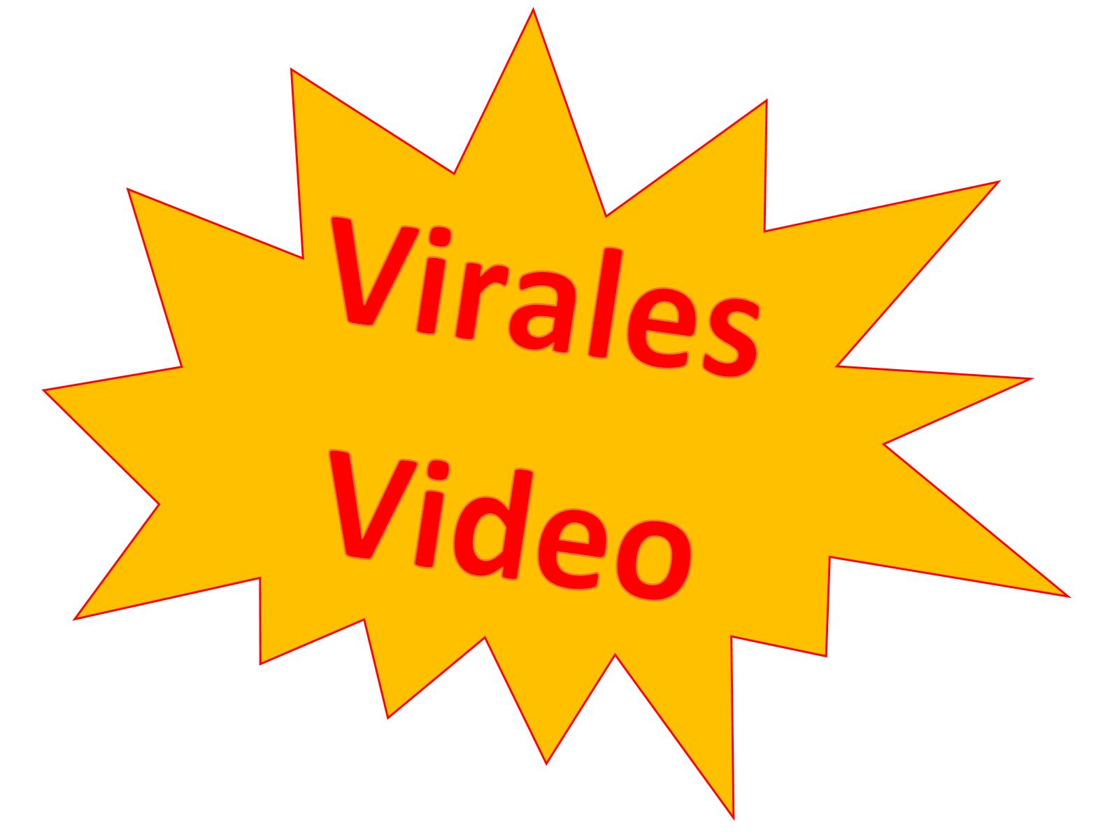 leil.de/di/pics/virales_video.png